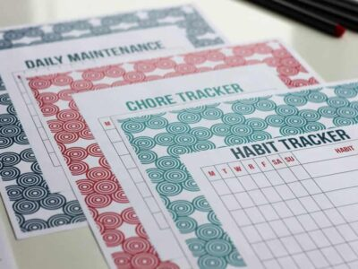 Habit Tracker, Chore Tracker, Daily Maintenance Tracker - Stay on Track Pack - Organizing Moms