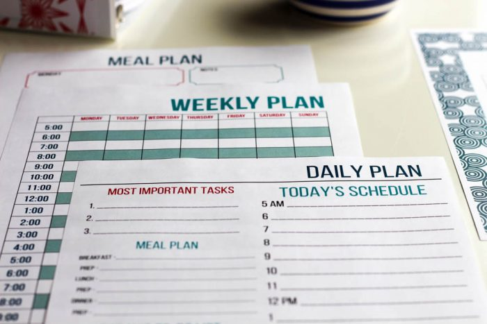 Daily Plan, Weekly Plan, Meal Plan. Stay on Track Pack - Organizing Moms