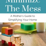Minimize the Mess – Book Review and Discount Code!