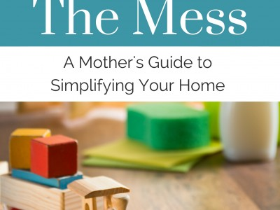 Minimize the Mess - a book about simplifying your home by Rachel Kratz