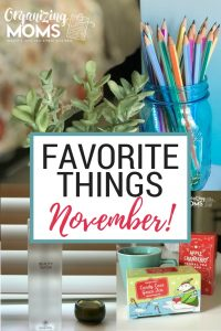 Favorite Things for November. A list of awesome finds for the month - many of which would make great gifts!