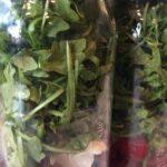 Make Ahead Mason Jar Salads