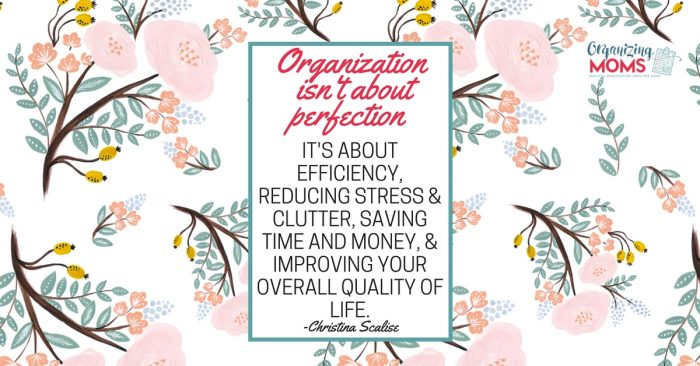Text - Organization isn\'t about perfection. It\'s about efficiency, reducing stress & clutter, saving time and money, & improving your overall quality of life - Christina Scalise. Pink floral background.