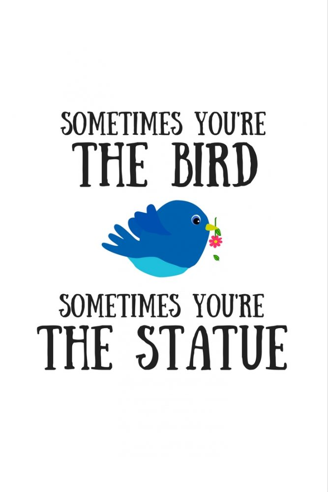 Sometimes you're the bird. Sometimes you're the statue.