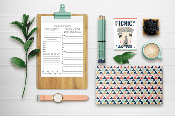 Daily plan. Color in planner page. Organizing Moms.