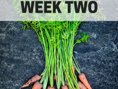 An organized plan for the Whole 30 during Week 2.
