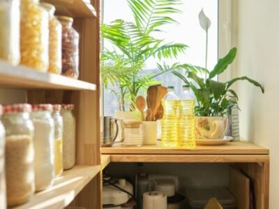 pantry organization shelf filled with jars of food in front of window