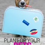 Plan for your pets during the holidays. Make sure your fur babies are happy and cared for during the holiday season.
