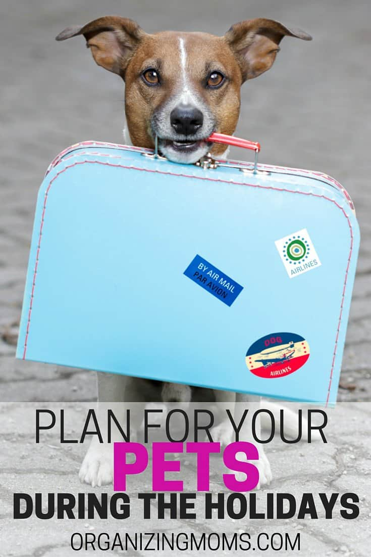 Plan for Your Pets
