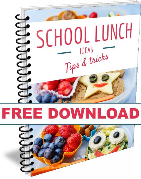 School lunch ideas tips tricks. This free download will help you organize your lunch making process. Save time and reduce stress.