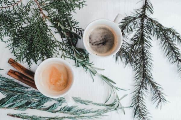 warm drinks in mugs surrounded by evergreen branches