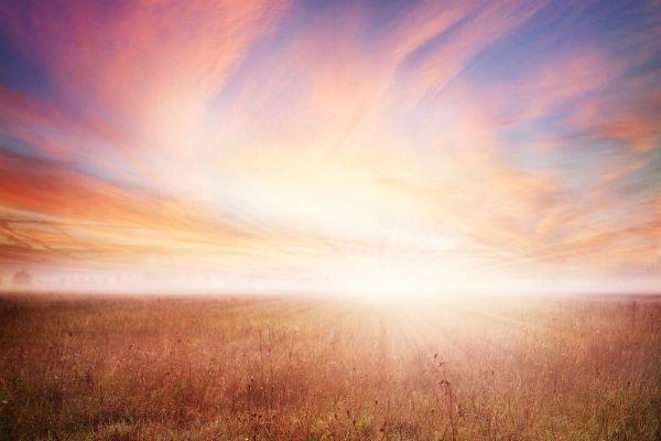 sunrise in unplowed field